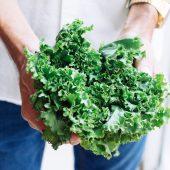 Hollandse superfoods #1 – de voedingsrijke boerenkool