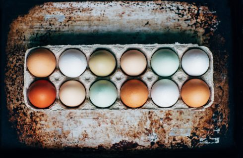 Mythe of feit: zijn witte eieren beter dan bruinrode eieren?