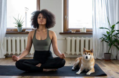 Doga: yoga samen met je hond