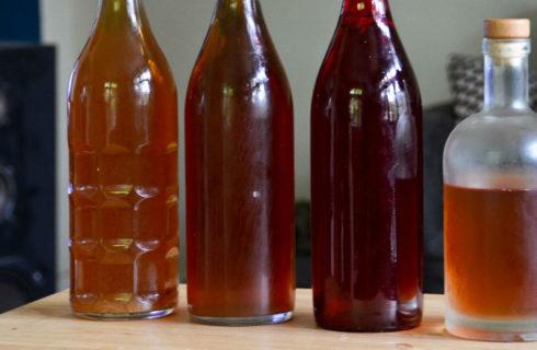 Kombucha: zo maak je het zelf (fermenteren kun je leren)