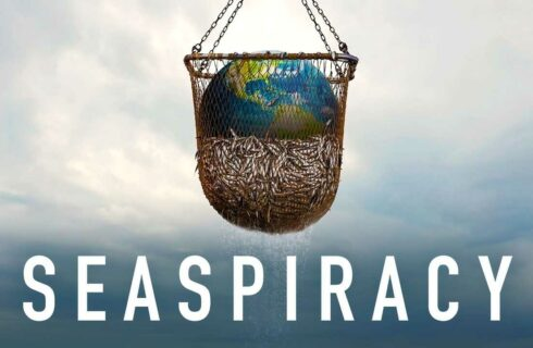 Seaspiracy: de nieuwe food docu op Netflix