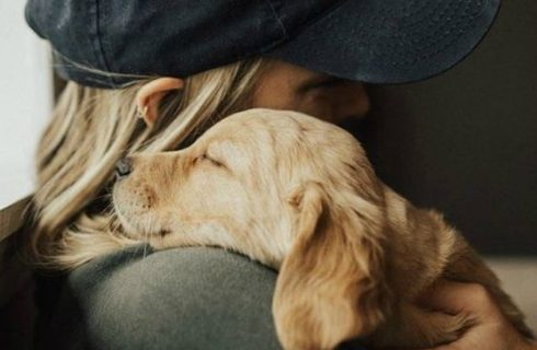 Heb je moeite met ontspannen? Deze dieren kunnen je helpen!