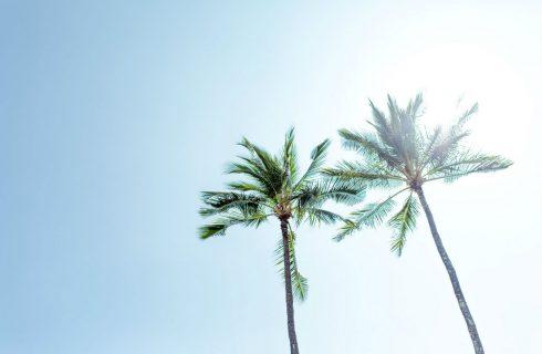 In 4 stappen naar een eenvoudiger en gelukkig leven