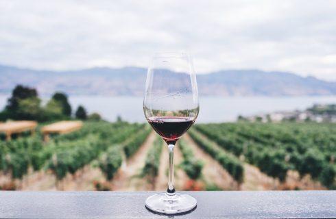 Een glas rode wijn per dag: gezond of ongezond?