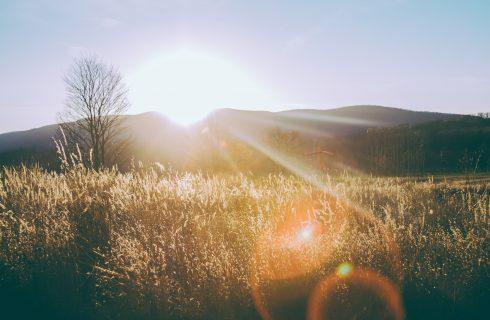 Hoe sterk is de voorjaarszon en waar moet je op letten?